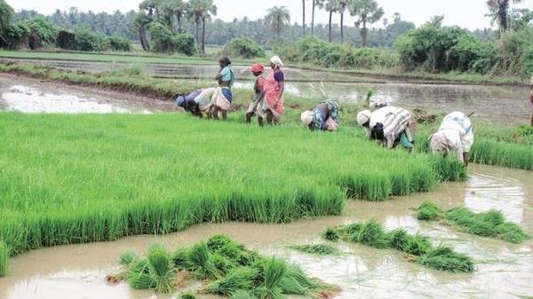 Kaleshwaram项目确保了海德拉巴未来的供水