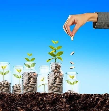 我应该投资共同基金SIP吗 您个人财务查询的答案