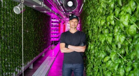 食物的未来 为什么农业在室内移动