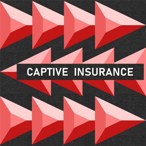 了解针对目标831b自备保险公司的IRS解决方案提议
