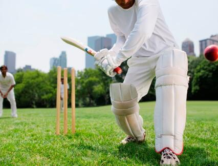 Telford Vice是板球王牌作家