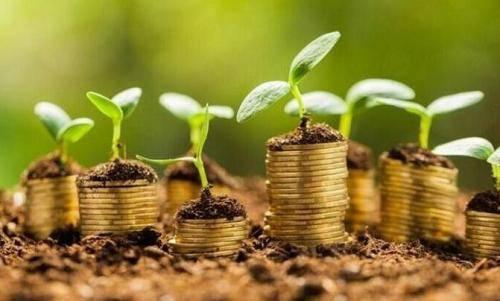 金管局设立20亿美元计划支持绿色投资策略