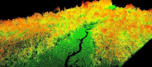 这个初创公司希望使植树造林更加高科技