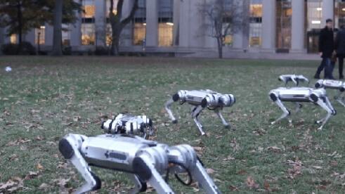 迷你猎豹机器人可能是埃隆·马斯克最糟糕的人工智能梦Night