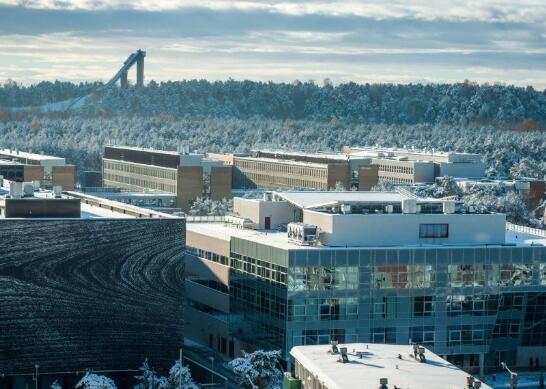 爱沙尼亚欢迎AI挑战