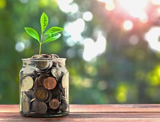 地区金融的简单战略取得成果