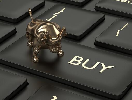 在股票市场表现出色的一年中一些旧的收藏夹成为了焦点
