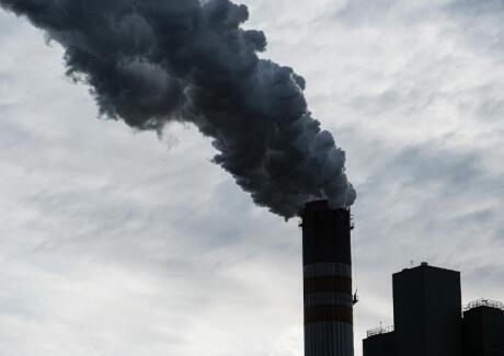 研究表明污染气候变化如何使我们变得笨拙