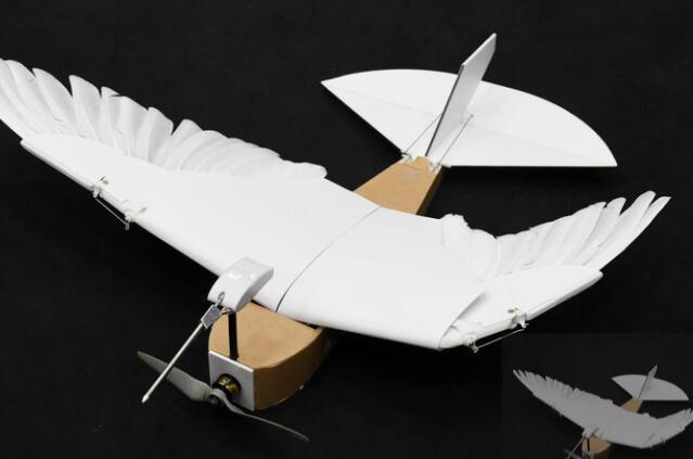 PigeonBot使机器人更接近鸟状飞行