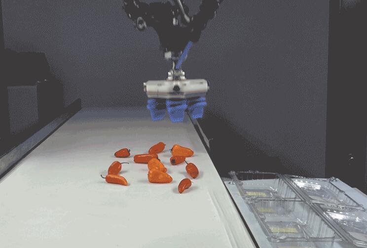 Soft Robotics从包括工业机器人巨头FANUC在内的投资者那里筹集了2300万美元