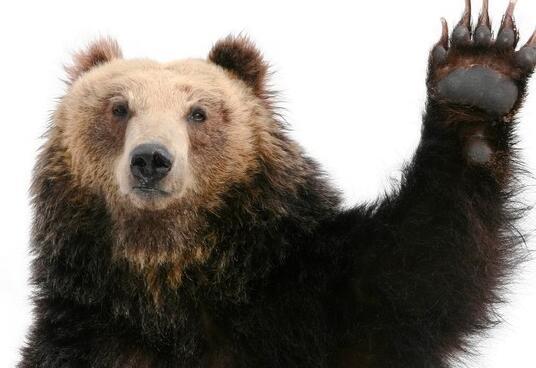 熊市周一痛击的2只股票