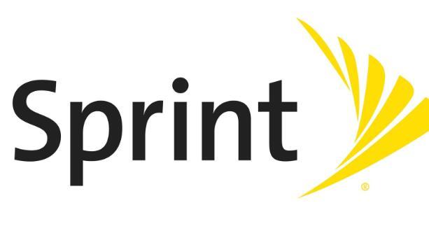 Sprint股票在2月飙升110.3%