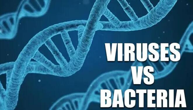 YC初创公司Felix计划用可编程病毒替换抗生素