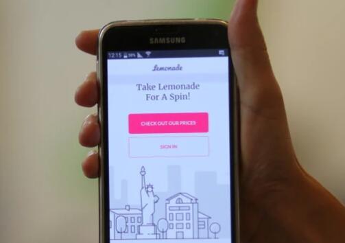 可能使Insuretech初创公司Lemonade IPO破产的四个柠檬
