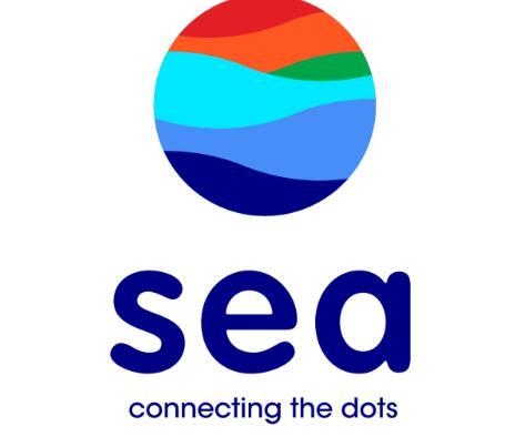 东南亚在线服务巨头从1月到5月建立的势头继续上升
