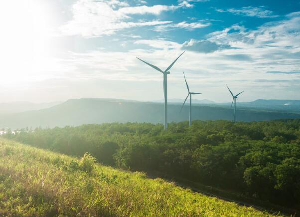 8月份3支最值得购买的可再生能源股票