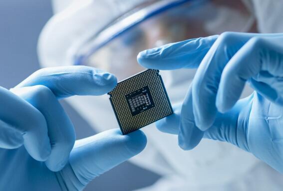 AMD股票飙升 迪士尼亏损数十亿美元
