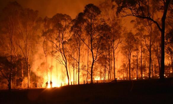 谷歌开始在地图和搜索中包含Wildfire数据