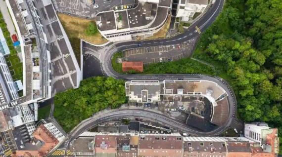 谷歌的人工智能平台树冠实验室将帮助城市种植更多树木